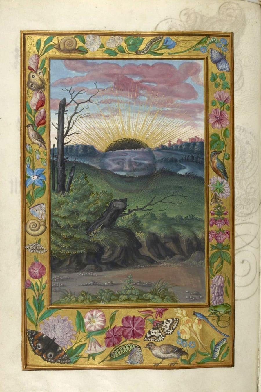 Illustration of a black sun from the Alchemical manuscript Splendor Solis