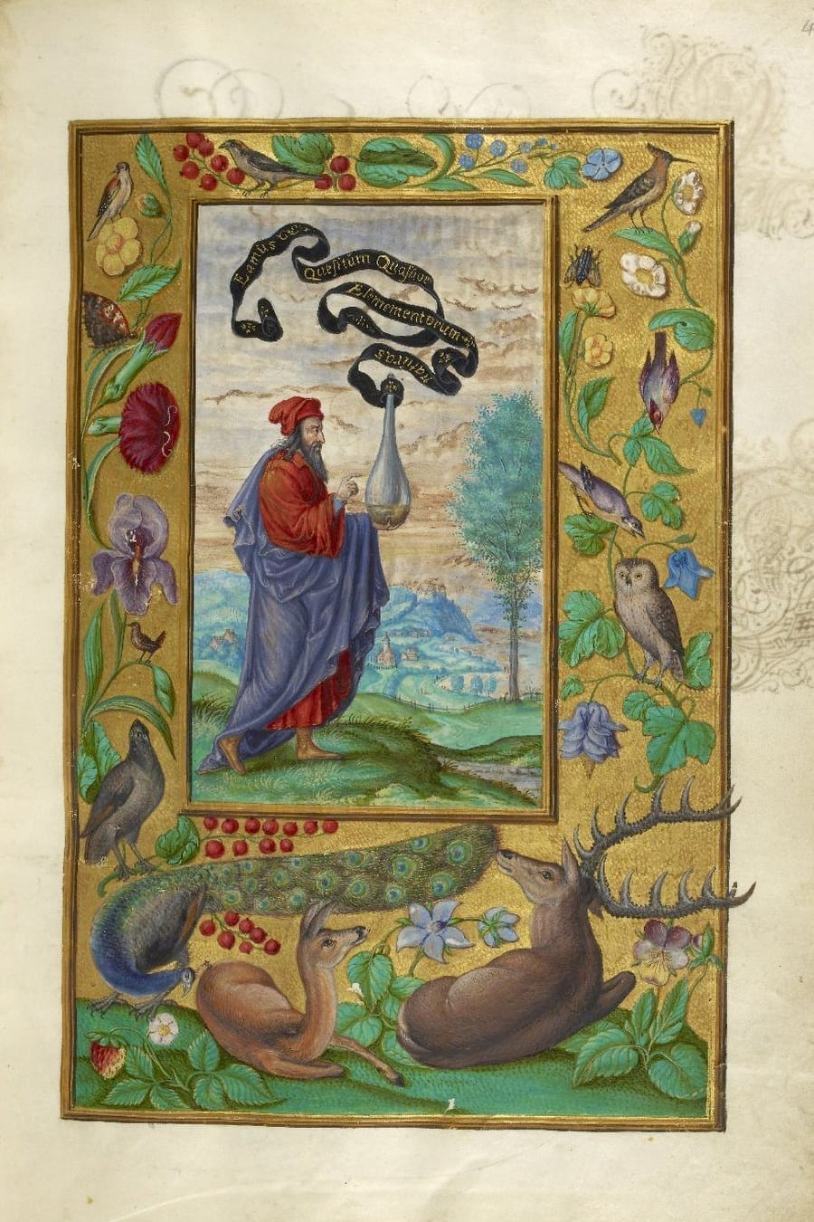 Illustration of man in red robe from the Alchemical manuscript Splendor Solis